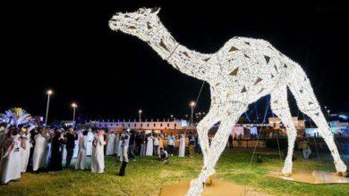 Photo of أكبر عارض للإبل في العالم يحطم رقماً قياسياً آخر في مهرجان سعودي
