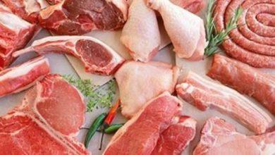 Photo of اسعار اللحوم والدواجن والاسماك اليوم | الاحد 8-9-2019 في مصر…اخر تحديث