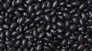 Photo of كل ما تحتاج لمعرفته حول الفاصوليا السوداء
