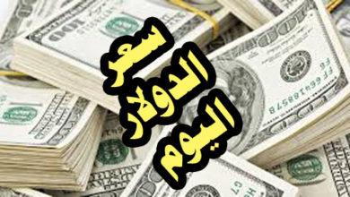 سعر الدولار اليوم السبت 12/10/2019 فى مصر
