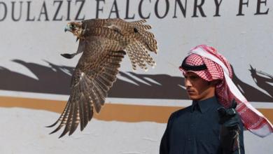 صورة تحضيرات نادي الصقور السعودي قبل المهرجان