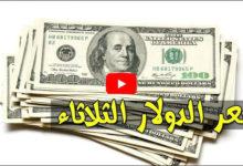 صورة استقرار سعر الدولار مقابل الجنية المصري اليوم الثلاثاء 19-11-2019