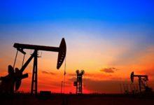 صورة الملك سلمان في اتصال مع ترامب وبوتين حول استقرار النفط