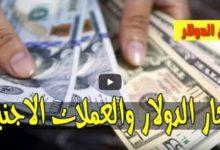 هبوط سعر الدولار برفقة اسعار العملات الاجنبية اليوم الجمعة 19 يونيو 2020 مقابل الجنيه السوداني بتعاملات السوق السوداء