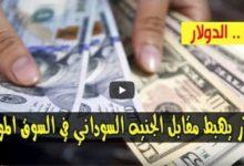 صورة تراجع سعر الدولار واسعار العملات الاجنبية مقابل الجنيه السوداني صباح اليوم الأربعاء 24 يونيو 2020 في السوق السوداء