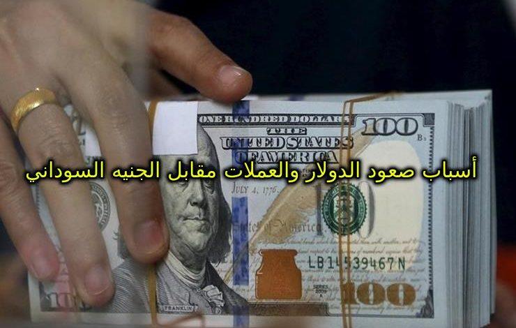 الدولار يصعد مجددا وأسعار العملات الأجنبية مقابل الجنيه اليوم الخميس 27/8/2020 من السوق الموازي