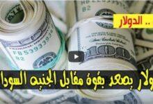 صورة ارتفاع سعر الدولار واسعار صرف العملات الأجنبية مقابل الجنيه السوداني اليوم الأحد 16 اغسطس 2020 في السوق السوداء