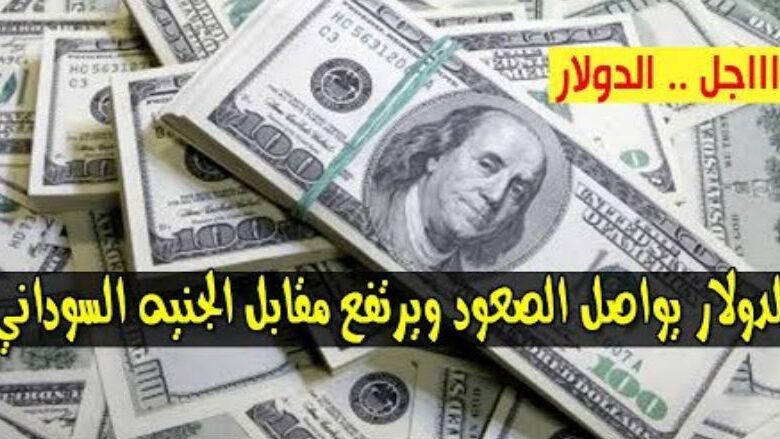 سعر الدولار واسعار العملات الاجنبية مقابل الجنيه السوداني صباح اليوم الأربعاء 12 اغسطس 2020 في السوق السوداء