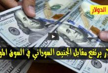 Photo of بالأرقام سعر الدولار واسعار العملات الاجنبية مقابل الجنيه السوداني اليوم السبت 22 اغسطس 2020 من السوق السوداء