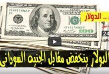 صورة انخفاض سعر الدولار وأسعار العملات الاجنبية مقابل الجنيه السوداني صباح الثلاثاء 22 سبتمبر 2020 في السوق السوداء