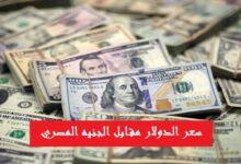 Photo of سعر الدولار مقابل الجنيه اليوم في مصر الأحد 13 سبتمبر 2020