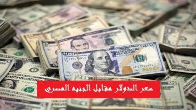 صورة سعر الدولار مقابل الجنيه اليوم في مصر الأحد 13 سبتمبر 2020