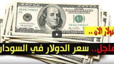 سعر الدولار واسعار العملات الأجنبية
