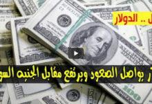 صورة ارتفاع كبير للدولار وأسعار العملات الاجنبية مقابل الجنيه السوداني اليوم الأربعاء 14/10/2020 في السوق السوداء
