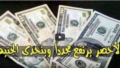 سعر الدولار اليوم الاثنين 23/11/2020