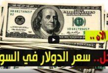 صورة سعر الدولار في السودان اليوم السبت 21 نوفمبر 2020م اسعار العملات الاجنبية مقابل الجنيه السوداني من السوق السوداء