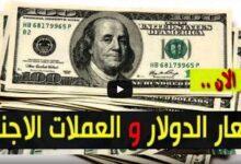 سعر الدولار الان