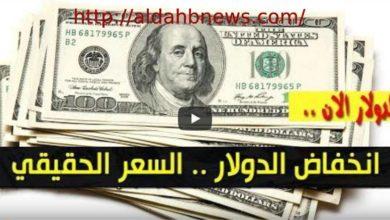 هبوط أسعار الدولار والعملات الأجنبية