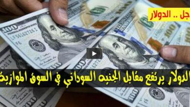 صورة ارتفاع سعر الدولار وأسعار العملات الاجنبية مقابل الجنيه السوداني الثلاثاء 5/1/2021 في السوق الموازي
