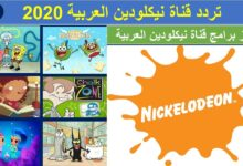 تردد قناة نيكلودين العربية 2021