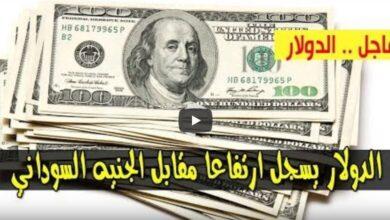 سعر الدولار